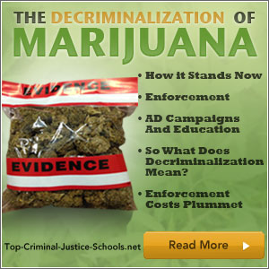 decriminalisation of marijuana A majority support liberalising policy towards cannabis  of cannabis decriminalisation in their most recent manifesto) there is still a fear among.